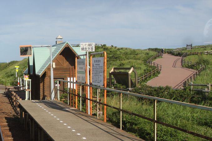 駅の営業は5月から10月のみ!小清水原生花園で散策を…
