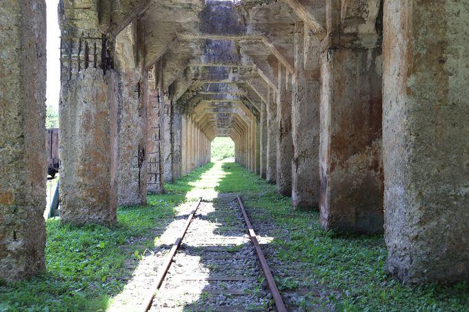 ホッパーの巨大遺構が残る旧太子駅