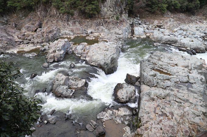 鉄橋も渡れる!武庫川右岸へ…