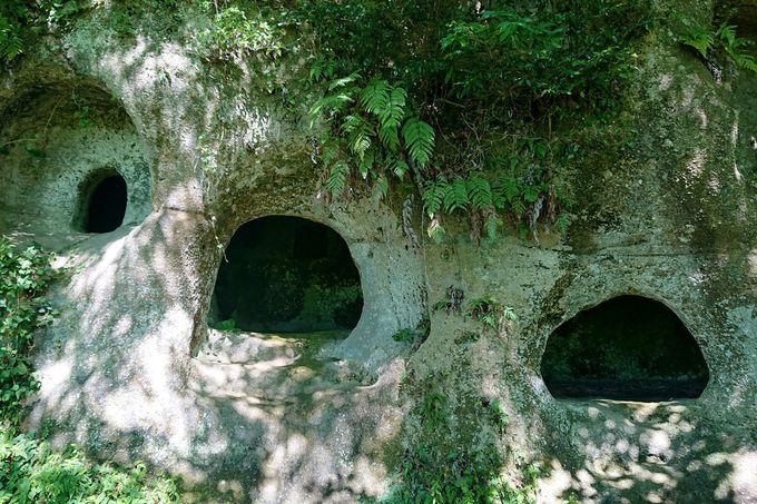 東日本最大級の横穴墓群!