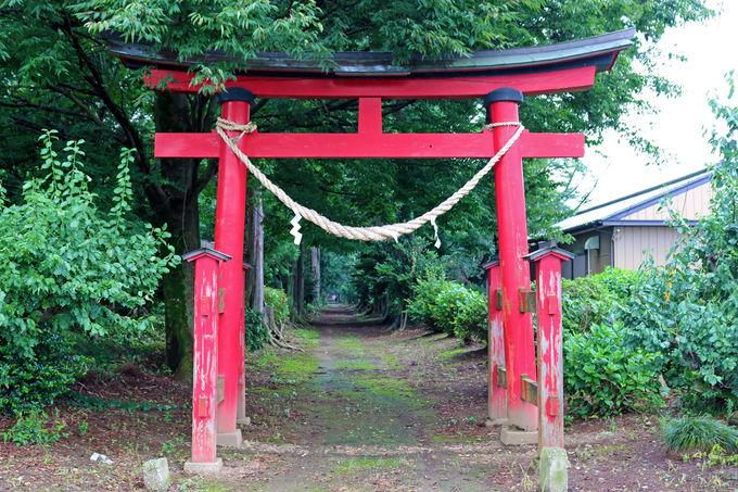 結城諏訪神社について