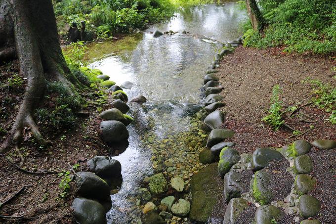 旧乃木別邸と乃木公園