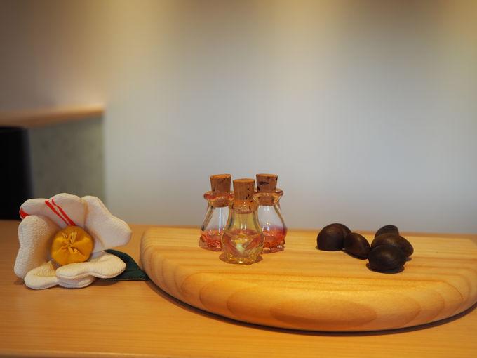 「ご当地楽」で椿油づくり体験
