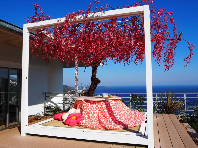 天空のこたつ席で楽しむ梅と絶景!「星野リゾート リゾナーレ熱海」