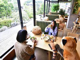 カピバラと相席で楽しい食事を!伊豆シャボテン動物公園・ギボン亭