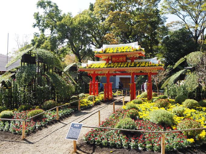 紅葉と菊のオブジェの競演!静岡「三島楽寿園菊まつり」