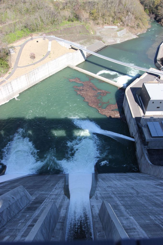 必見スポット3:ダムの上辺から大迫力の放流を見る!