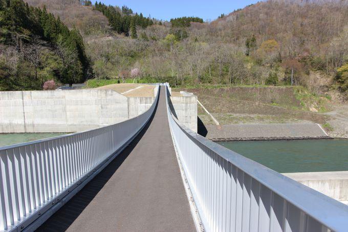 必見スポット1:橋からダムのそそりたつ壁を見上げる!