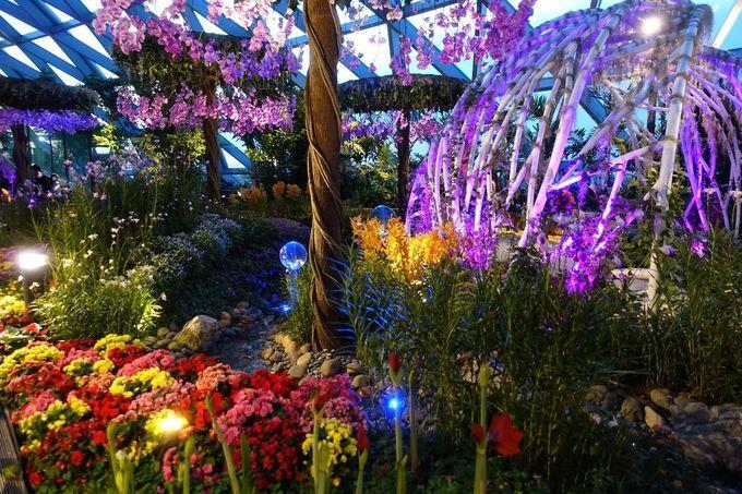 室内の庭園「キャノピーパーク(Canopy Park)」