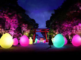 「下鴨神社 糺の森の光の祭」2018年も幻想的な京都の夜を
