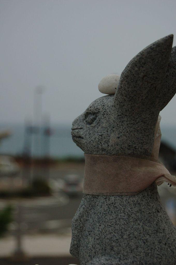 白兎神社だけの特別な縁起物「結び石」