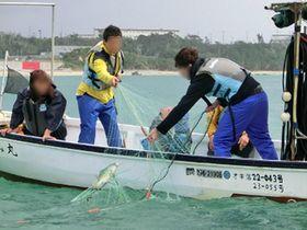 辺野古の海で海人(うみんちゅ)になる!採って捌いて食べるまで!沖縄で海人体験!!