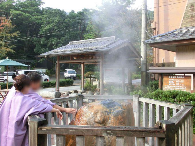 関西では根強い人気の城崎温泉