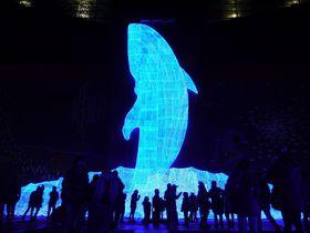 大阪・海遊館「ちきゅうたいかんイルミネーション」家族で楽しめる無料エリアをご紹介!