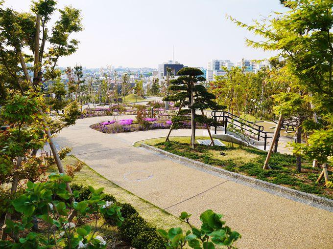 富士山が見える目黒天空庭園