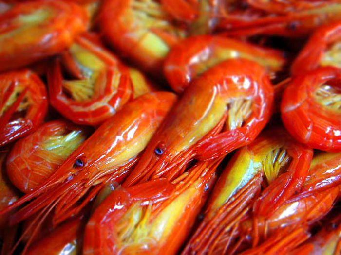 「北海シマエビ」が美味!夏と秋だけの別海町の絶品グルメ
