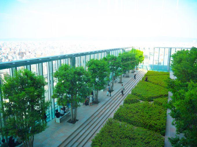 26.「あべのハルカス」日本一の超高層