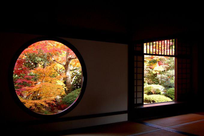 悟りの窓と迷いの窓から見る紅葉が美しい「源光庵」