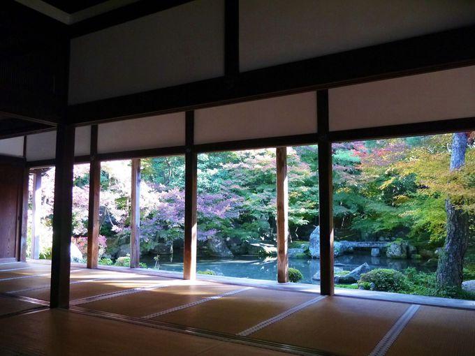 蓮華寺の書院からの紅葉