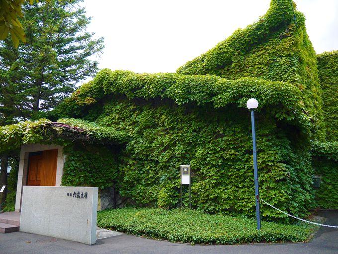 蔦に覆われた六花文庫