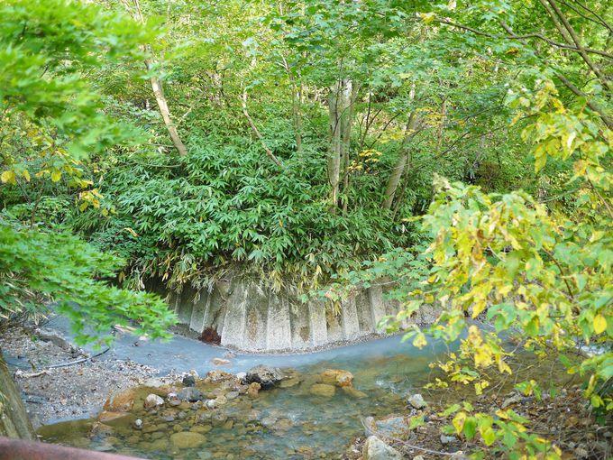 温泉と川の水