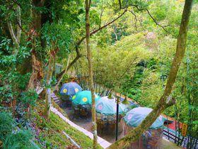 台湾茶を台北郊外の猫空で!山村にひっそり佇む「邀月茶坊」