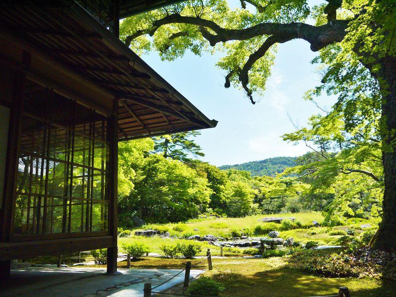 京都「伝統産業の日」は着物なら平安神宮も二条城も無料!