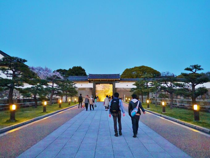 夜の大阪城西の丸庭園