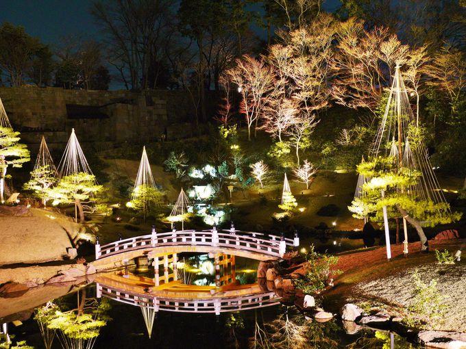 玉泉院丸庭園のライトアップ