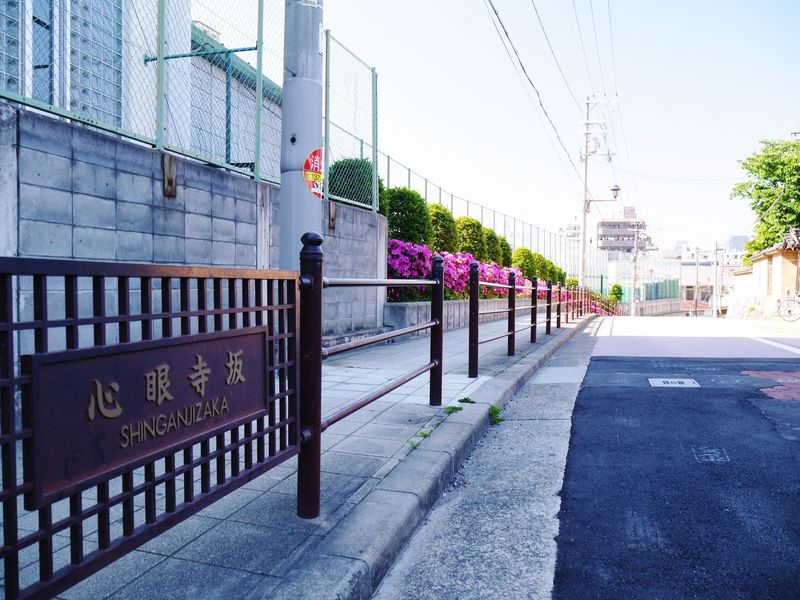 真田丸の場所はどこ?最新の有力説を辿る大阪玉造歴史散策