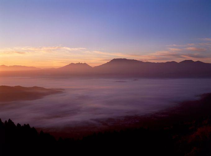 大観峰からの雲海