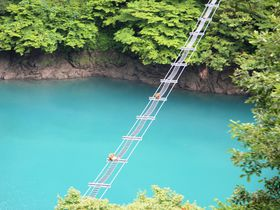 おサル専用の橋がカワイイ!黒部峡谷トロッコ電車・撮影スポット