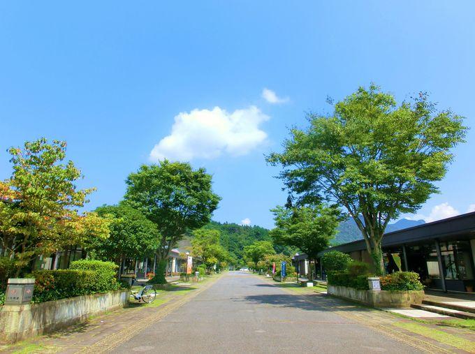 やきものの里「有田」をぐるっと観光してみよう