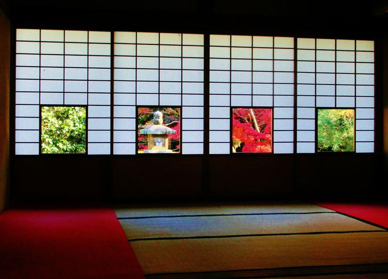 京都・雲龍院の紅葉が美術品のよう…。窓からの眺めが美しい紅葉スポット