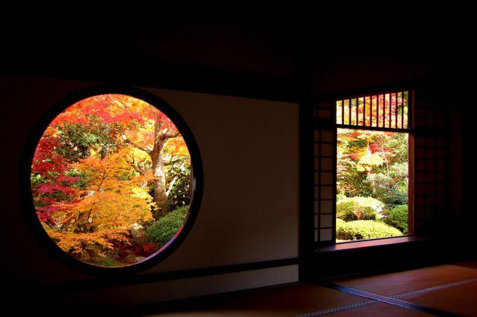 源光庵の悟りの窓と迷いの窓からの紅葉