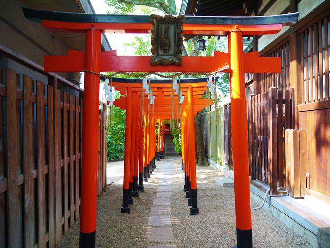 堀越神社境内には家康ゆかりの茶臼山稲荷社が
