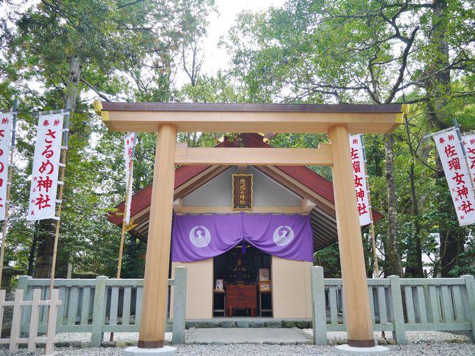 縁結び・芸事の佐瑠女神社