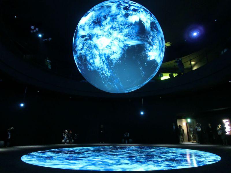 大阪エキスポシティ「ニフレル」なら海の生きものが間近に見られる!