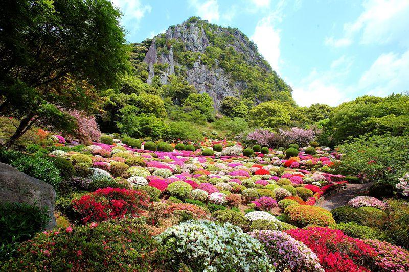 約20万本のつつじの群生が彩る 武雄領主の大庭園 佐賀・御船山楽園