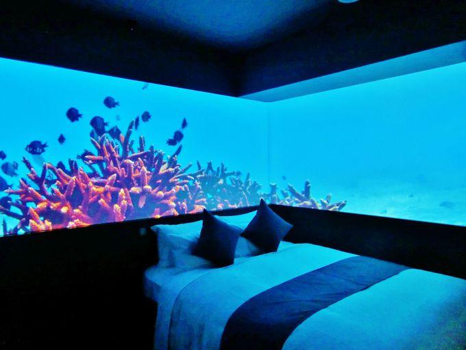 プロが厳選!沖縄のリゾートホテル