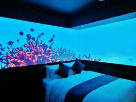 水族館にお泊りしてるみたい!ホテルグレイスリー那覇「美ら海ルーム」