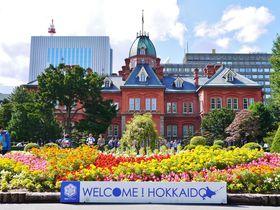 札幌駅周辺、残り1時間で楽しめるおすすめグルメ・観光スポット
