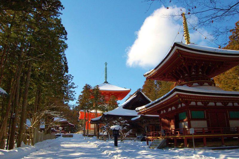 高野山日帰り観光ガイド保存版 たった5時間でもポイントおさえて大満足!
