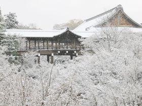 雪が降ったらラッキー!一度は見たい京都有名観光名所の雪景色