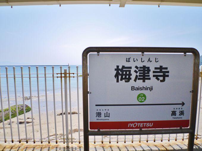 松山市駅からたった18分の絶景