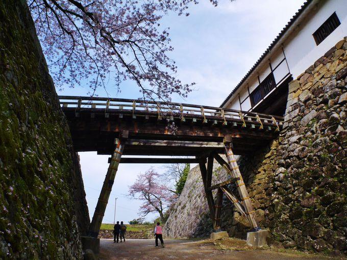 彦根城本丸までの道のり