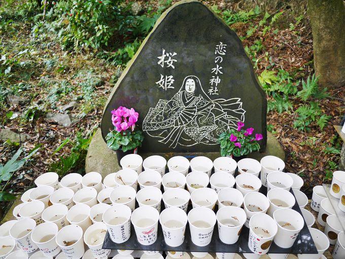 2.恋の水神社(美浜町)