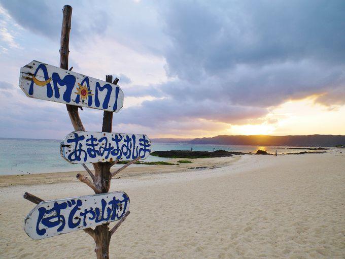 朝はビーチをお散歩