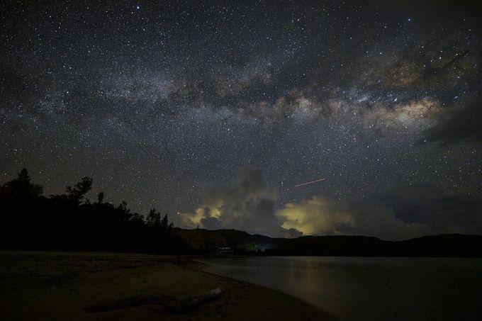 西表島の夜は大人のワクワクで溢れてる!