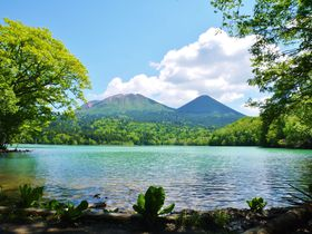 道東「釧路・阿寒湖」を2泊3日で!王道の観光モデルコース